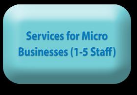 Micro enterprises